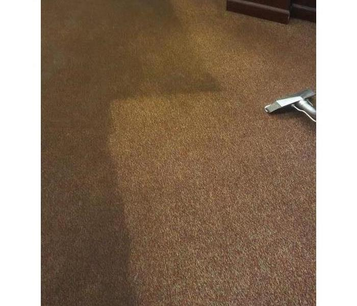 Carpet cleaning of old carpet Before