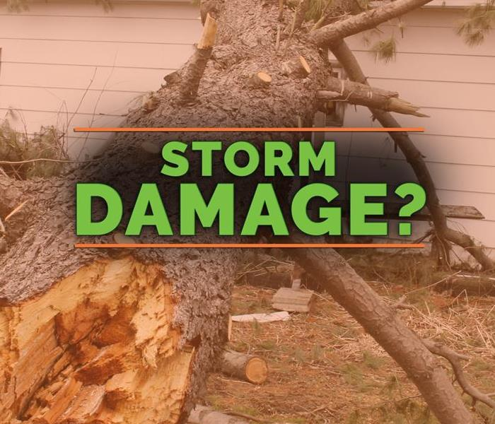 Storm Damage Mandatory Items for Your Company's First Aid Kit