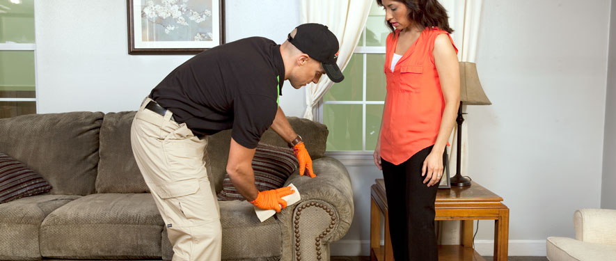 Watertown, NY carpet upholstery cleaning