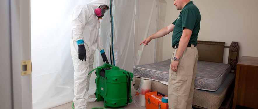 Watertown, NY mold removal process